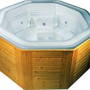 СПА-бассейн переливной SKT 302A фото