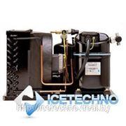 Компрессорно-конденсаторный агрегат Tecumseh TAJ4517ZHR фото