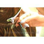 Курсы по наращиванию волос фото