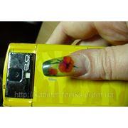 Наращивание «Аквариум» с лепкой внутри ногтя фото