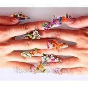 Наращивание ногтей с применением технологии «лепка», «аквариум» (на 2 руки) фото