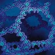 Детонационные наноалмазы ДНА фото