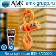 Весы крановые ВЭК 5/20000 (20 т) фото