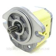 Шестеренный мотор наружного зацепления , гидромотор Vivoil, Bucher,Marzochhi,Cassapa фото