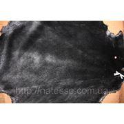 Шкуры бобра стриженого крашеного в черный цвет. фото