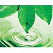 Комплексне еколого-гігієнічне дослідження спільно з науково-сервісною фірмою ОТАВА фото