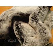 Рекс 5 серый 1 п. фото
