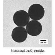 Нанопорошки монодисперсные из сферических частиц оксидов редкоземельных металлов фото