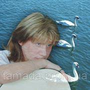 Агафонов Владислав и группа «Планета Икс» - Белые лебеди (караоке, минус) фото