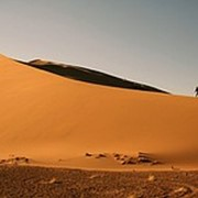 Турестические выезды заповедник Алтын Емель фото