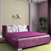 Кровать Плезир (DAVIDOS TM) фото