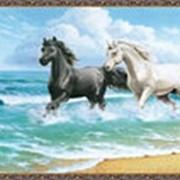 Гобеленовая картина 75х145 GS389 фото