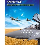 Інсектицид НУПРІД 600 фото