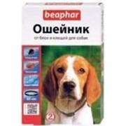 Ошейник Beaphar Биофар инсектоакарицидный для собак на 6 мес., 65 см фото