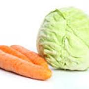 Продается КАПУСТА(Белоснежка-чищенная)-50тг/кг, МОРКОВЬ(Александровка)-50тг/кг Оптом, в наличии более 50т. моркови, 100т. капусты. Овощи отборные, торг. возможен! фото