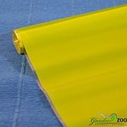 Plastiflora Пленка в рулоне лак матовый 70 см/240гр салатовый фото