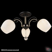 Reluce 03810-0.3-03 светильник потолочный фото