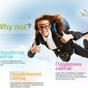 Why not?, студия web-дизайна. Разработка, поддержка и продвижение сайтов! фото