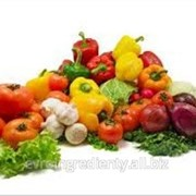 Овощные наполнители фирмы Zentis фото