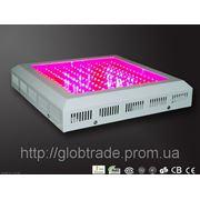 Светодиодная фито-панель для теплиц 150W для выращивания растений внутри помещений Llight Панель с фото