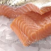 Охлажденная филе лосося и форели фото