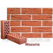 Mazuria фото
