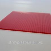Сотовый поликарбонат красный 4мм Oscar (Оскар) фото