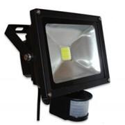 Светодиодный прожектор 30W 5500K PIR фото