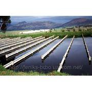 Очистка водоемов, очистка прудов, удаление водорослей, биологическая очистка водоемов фото