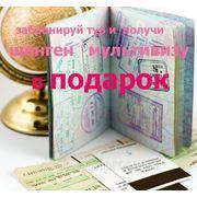 Шенген мультивиза в подарок фото