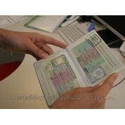 Шенгенские визы в Харькове фото