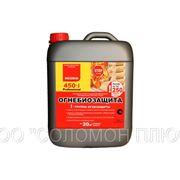 NEOMID 450-1 Огнебиозащита для древесины фото