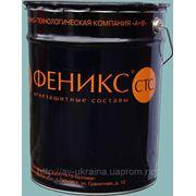 Огнезащитная краска «ФЕНИКС СТС» для несущих металлоконструкций фото