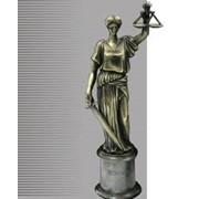 Услуги юридические, адвокатские, Луганская область фото