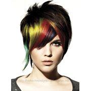 Многоцветное окрашивание отдельных зон головы химическими красителями фото