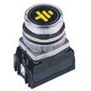 Указатель заземления NEF30-WUg24V-230V фото