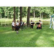 Музыка для выездной церемонии бракосочетания. фото