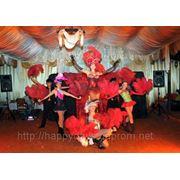 Организация праздников свадеб, шоу программы для свадьбы фото