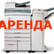Аренда копировальных аппаратов фото