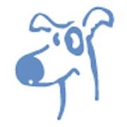 Ветеринария и ветеринарные услуги фото