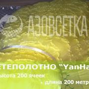 Сетевое полотно YanHai (Янхай) из монолески, ячейка 35мм, толщина 0,15мм, высота 200 ячеек фото