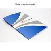 Папки картонные деловые фото