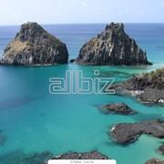 Пляжный отдых: Турция, Египет, ОАЭ, Тайланд, острова(Доминикана, Куба, Шри Ланка, Бали). фото