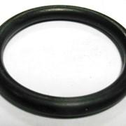 Уплотнительное кольцо редуктора 170х4,170х6 фото