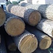 Наладка деревообрабатывающего оборудования фото