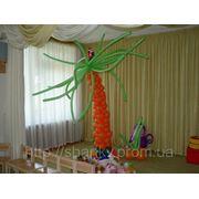 Африканская пальма из воздушных шаров .Высота - 2м. фото