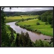 Создание и внедрение средств по охране окружающей среды фото