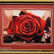 Набор для творчества Красная роза фото