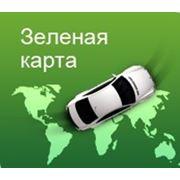 «Зеленая карта» в Российскую Федерацию фото