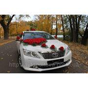Свадебное авто Полтава фото